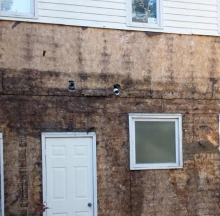 Can mold grow under home siding?
